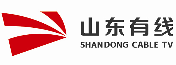 山东广电费县分公司成立专项工作组整治非法卫星电视接收设施