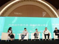 爱奇艺首席内容官王晓晖:购买电视剧在网络上播出既赔钱也不持续