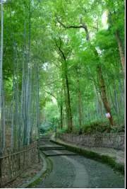 山不在高,有仙则名,水不在深,有龙则灵 聆听来自杭州丹田的声音