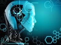 如果这个世界的工种都被机器人取代了,人类可以做什么