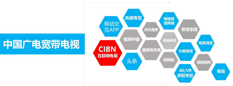 国广东方毛卫兵:携手CIBN互联网电视,打造DVB+OTT开放共赢新生态