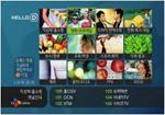 韩国有线数字电视系统成功案例介绍